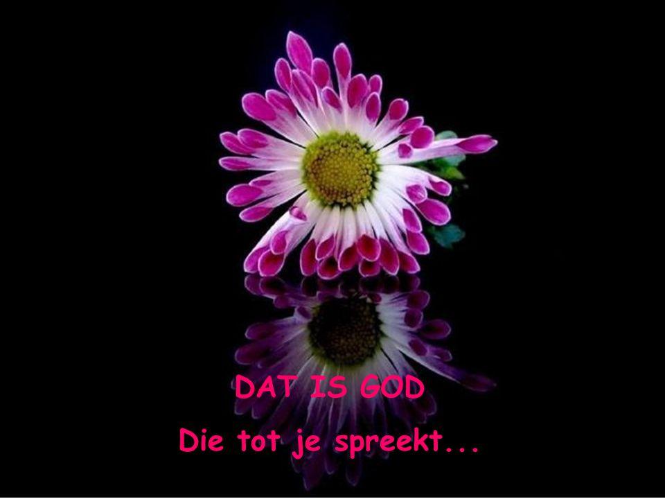 DAT IS GOD Die tot je spreekt...