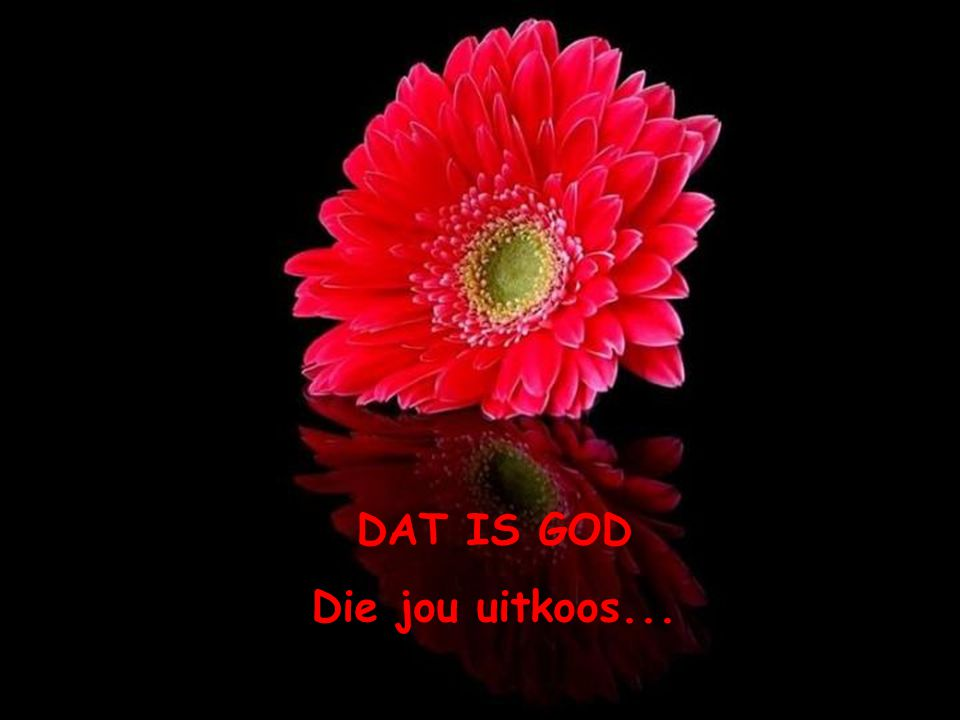 DAT IS GOD Die jou uitkoos...