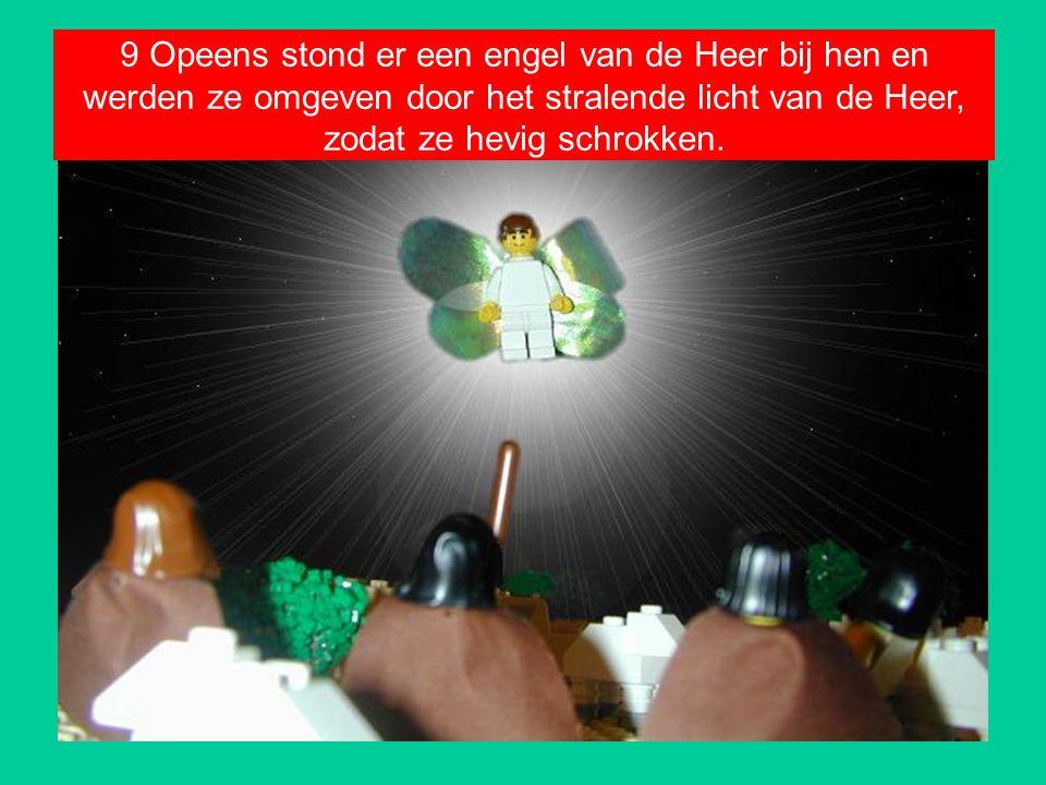 9 Opeens stond er een engel van de Heer bij hen en werden ze omgeven door het stralende licht van de Heer, zodat ze hevig schrokken.