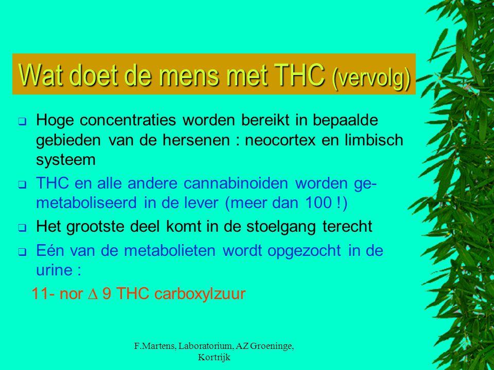 Wat doet de mens met THC (vervolg)