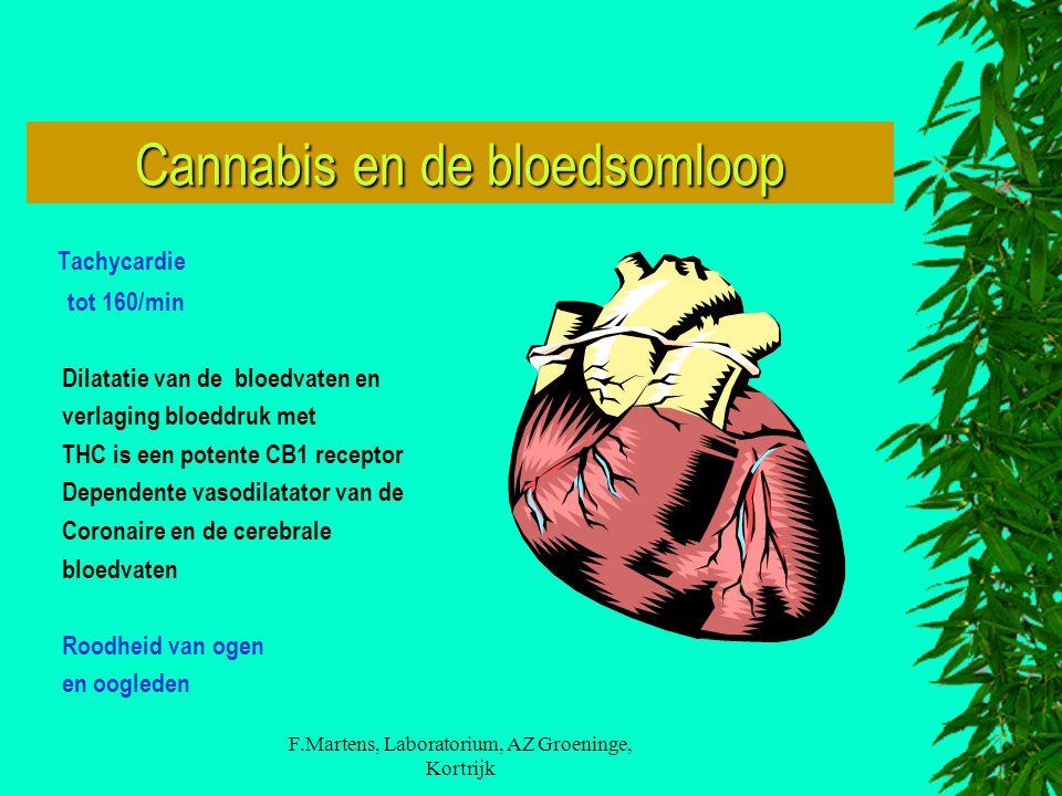 Cannabis en de bloedsomloop