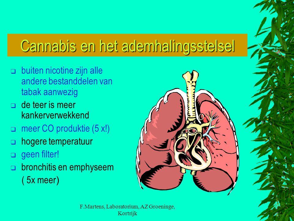 Cannabis en het ademhalingsstelsel