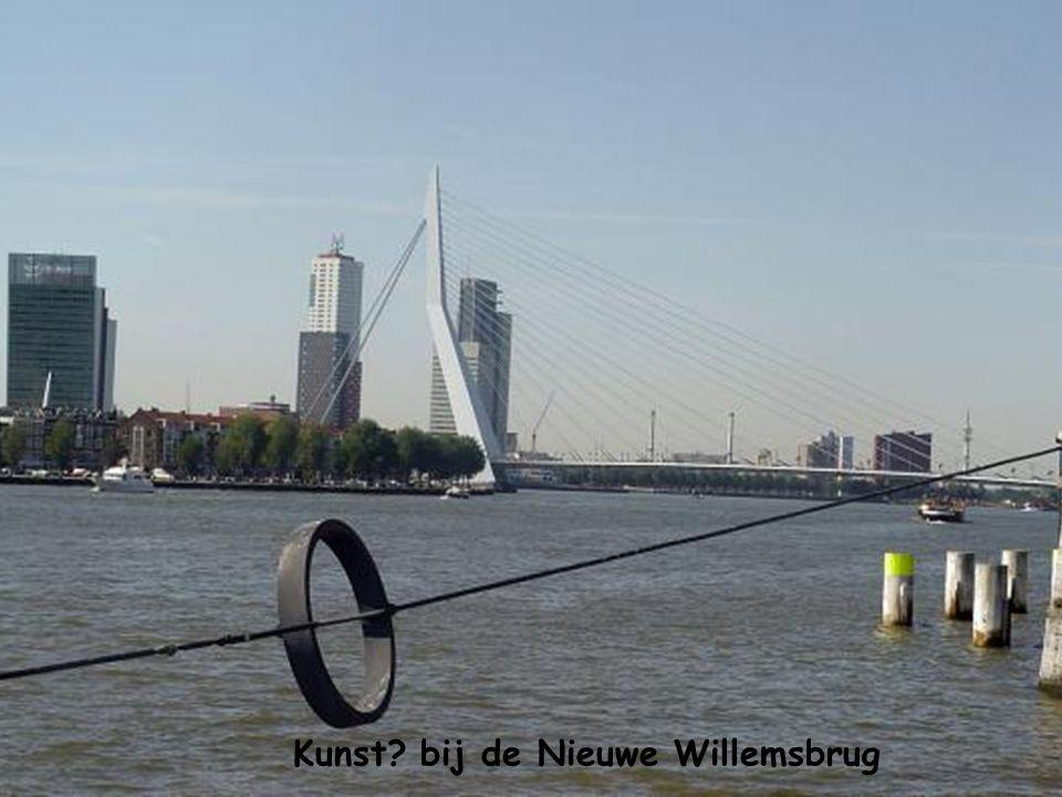 Kunst bij de Nieuwe Willemsbrug