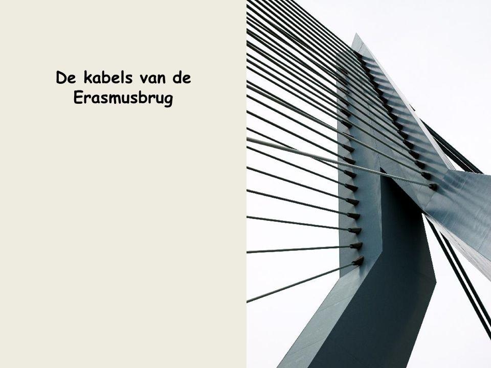 De kabels van de Erasmusbrug