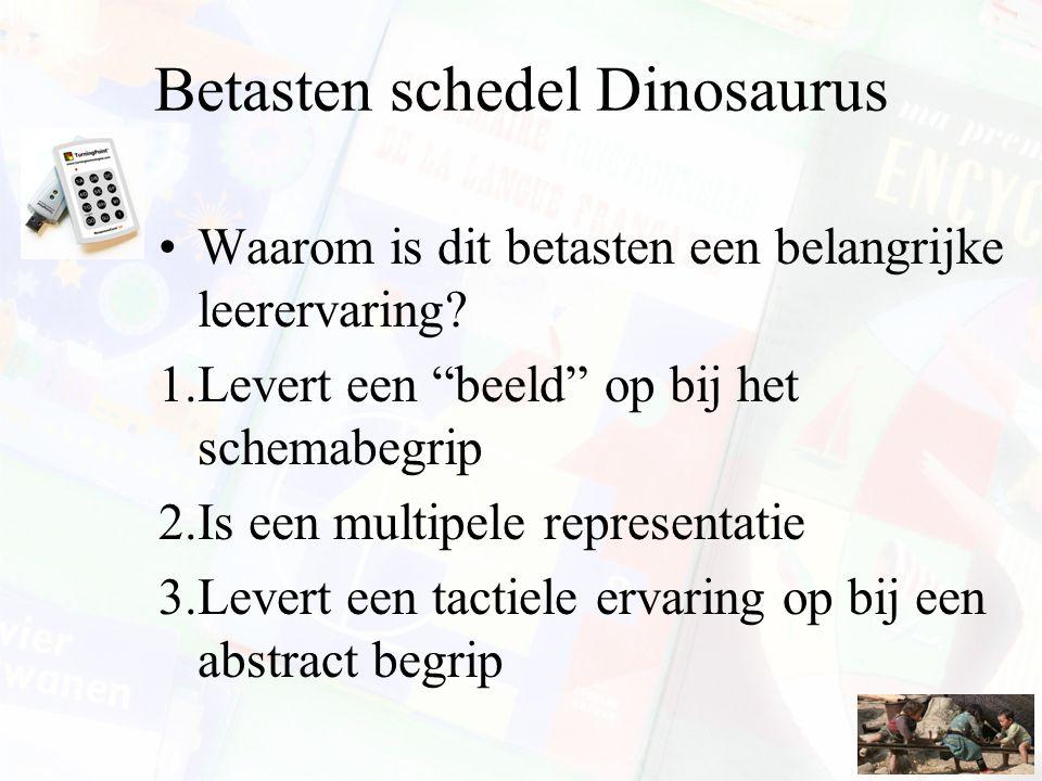 Betasten schedel Dinosaurus