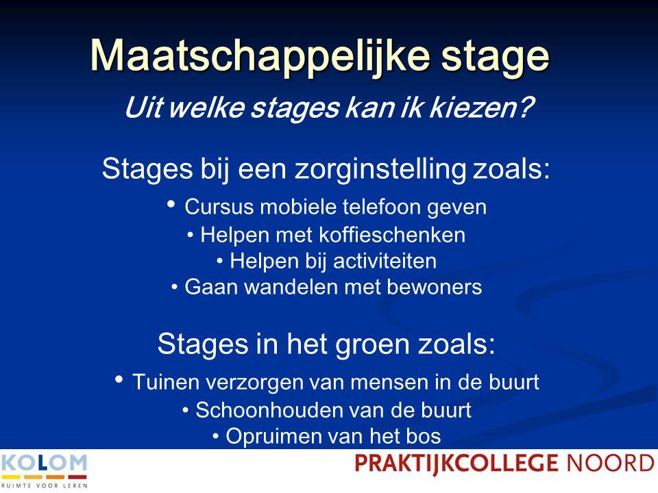 Maatschappelijke stage Uit welke stages kan ik kiezen