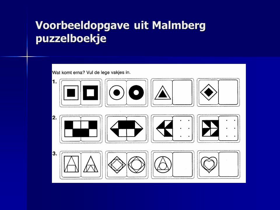 Voorbeeldopgave uit Malmberg puzzelboekje
