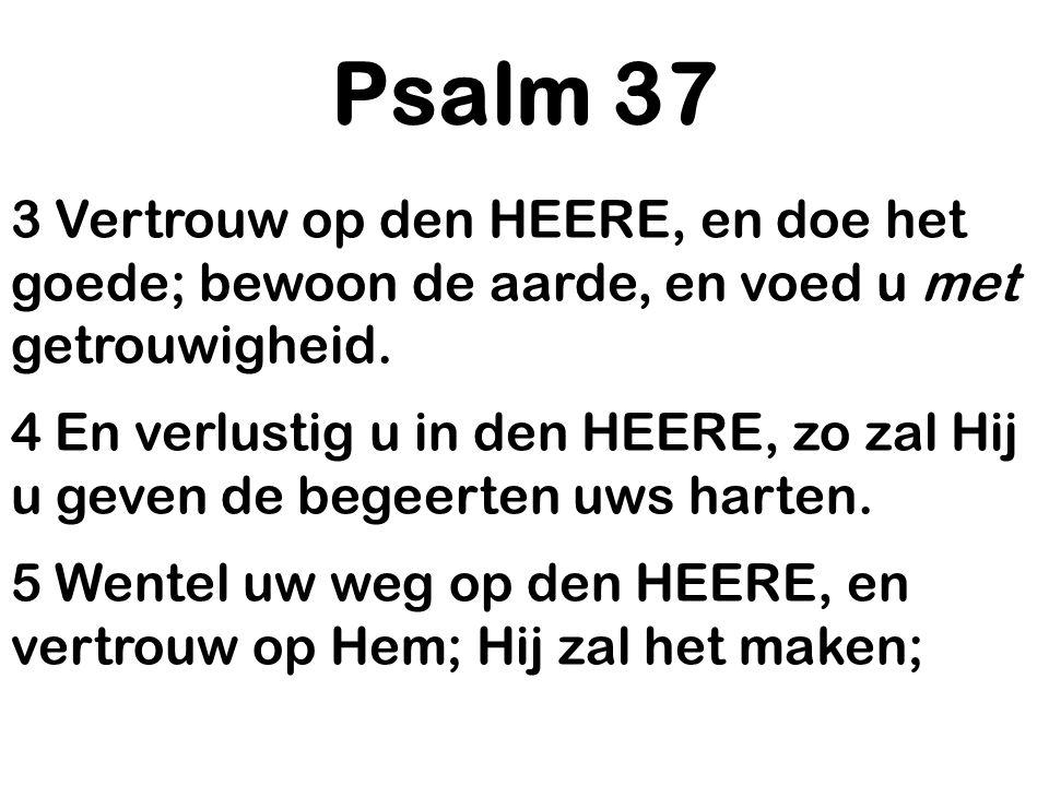 Psalm 37 3 Vertrouw op den HEERE, en doe het goede; bewoon de aarde, en voed u met getrouwigheid.