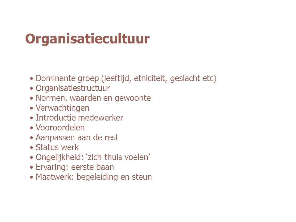 Organisatiecultuur Dominante groep (leeftijd, etniciteit, geslacht etc) Organisatiestructuur. Normen, waarden en gewoonte.