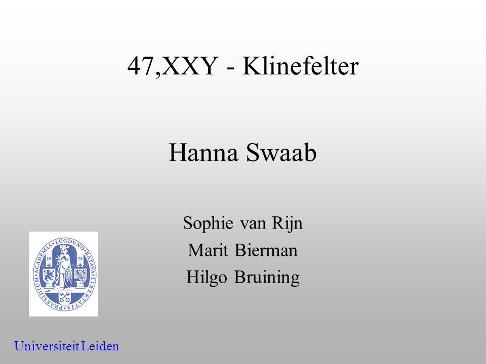 Hanna Swaab Sophie van Rijn Marit Bierman Hilgo Bruining