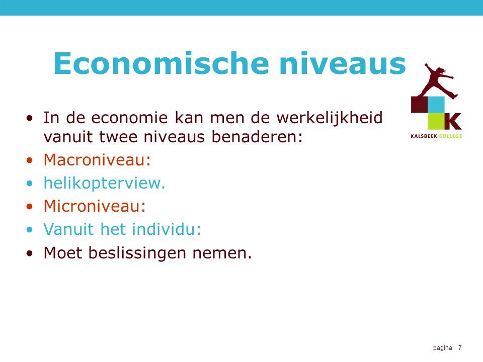 Economische niveaus In de economie kan men de werkelijkheid vanuit twee niveaus benaderen: Macroniveau: