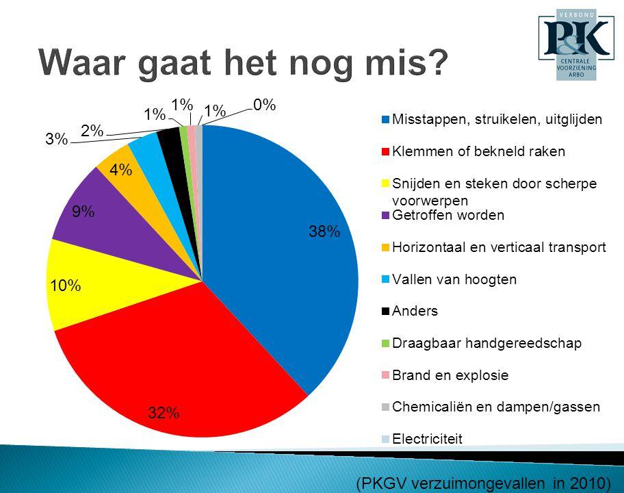 Waar gaat het nog mis (PKGV verzuimongevallen in 2010)