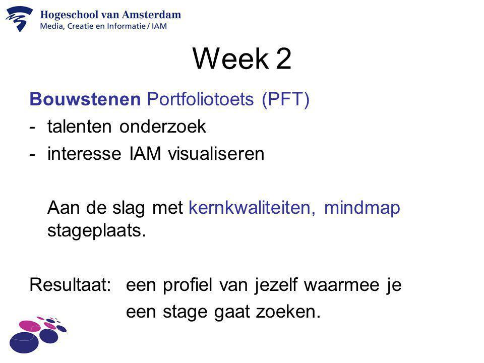 Week 2 Bouwstenen Portfoliotoets (PFT) talenten onderzoek