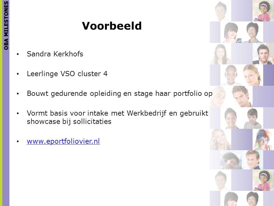 Voorbeeld Sandra Kerkhofs Leerlinge VSO cluster 4