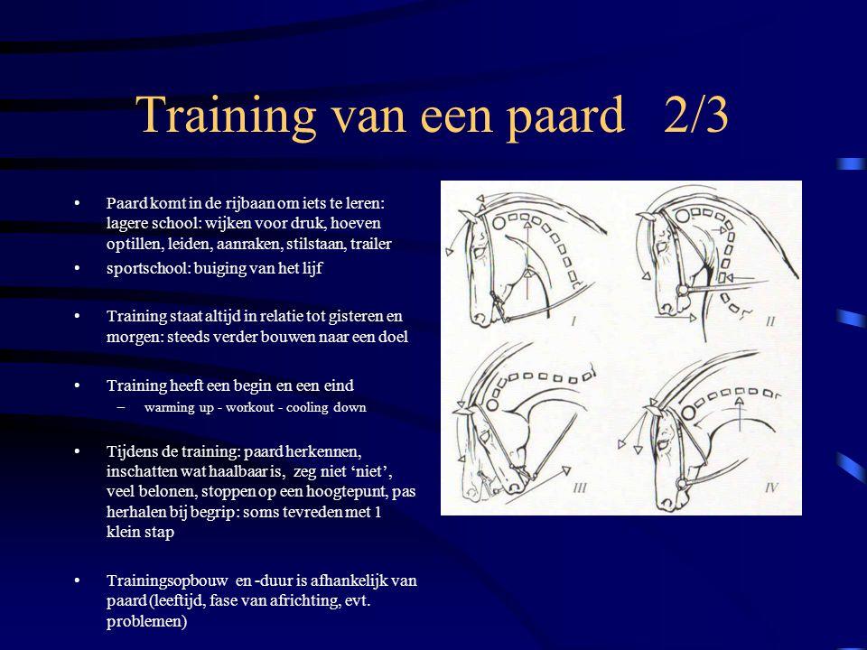 Training van een paard 2/3