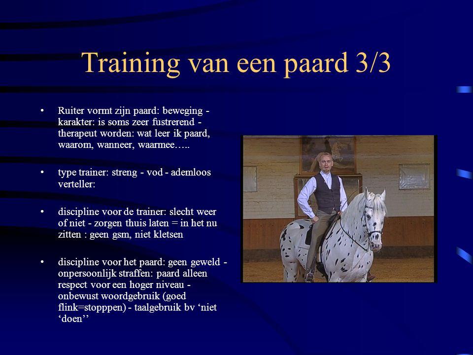 Training van een paard 3/3