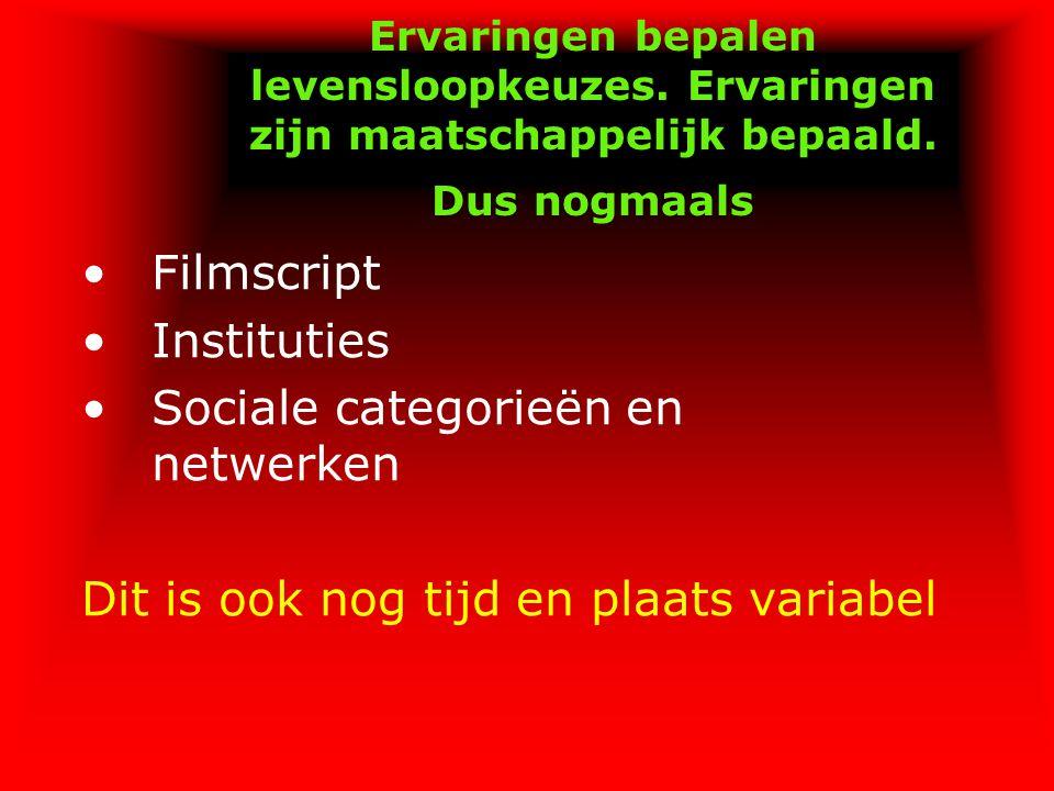 Sociale categorieën en netwerken