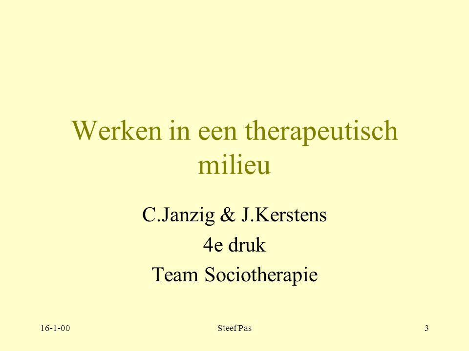Werken in een therapeutisch milieu