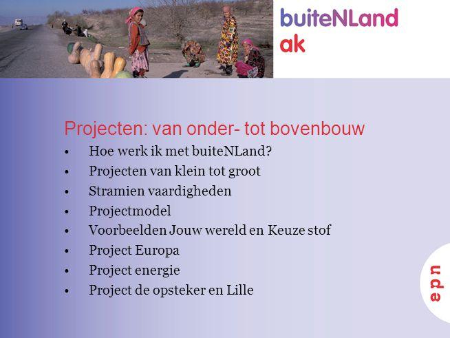 Projecten: van onder- tot bovenbouw