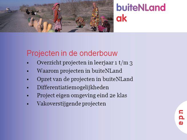 Projecten in de onderbouw