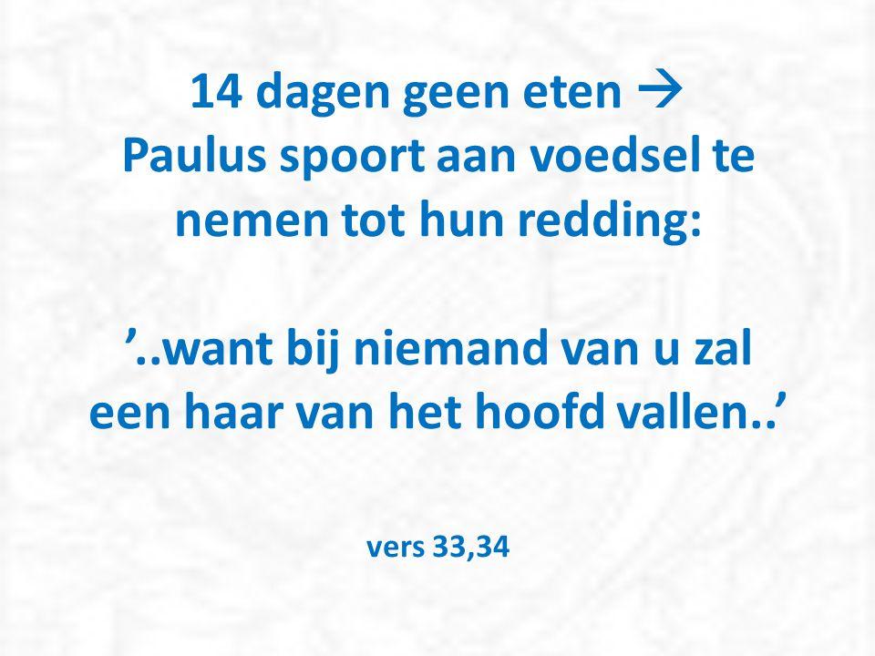 14 dagen geen eten  Paulus spoort aan voedsel te nemen tot hun redding: '..want bij niemand van u zal een haar van het hoofd vallen..' vers 33,34
