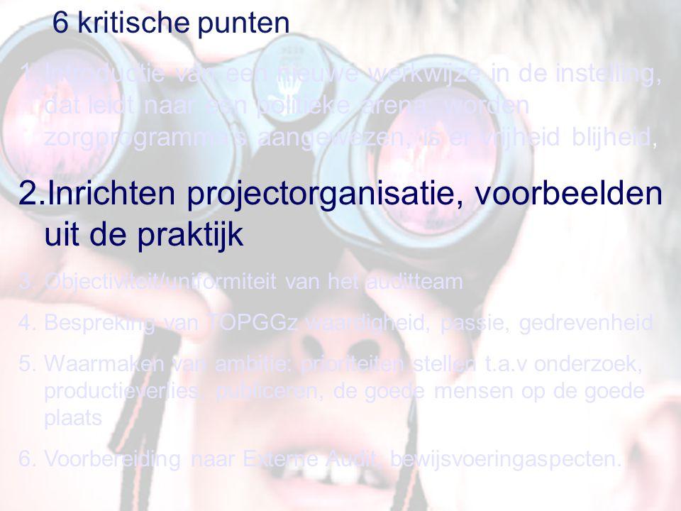 Inrichten projectorganisatie, voorbeelden uit de praktijk