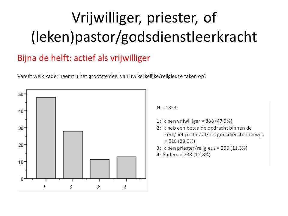 Vrijwilliger, priester, of (leken)pastor/godsdienstleerkracht