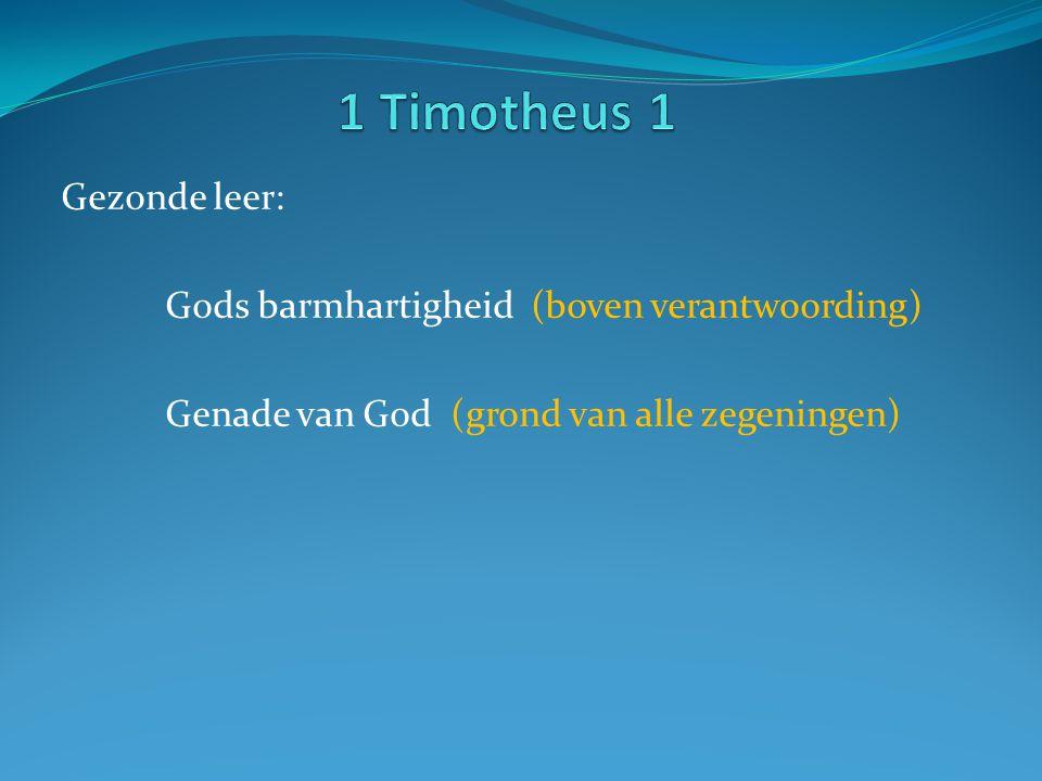 1 Timotheus 1 Gezonde leer: Gods barmhartigheid (boven verantwoording)