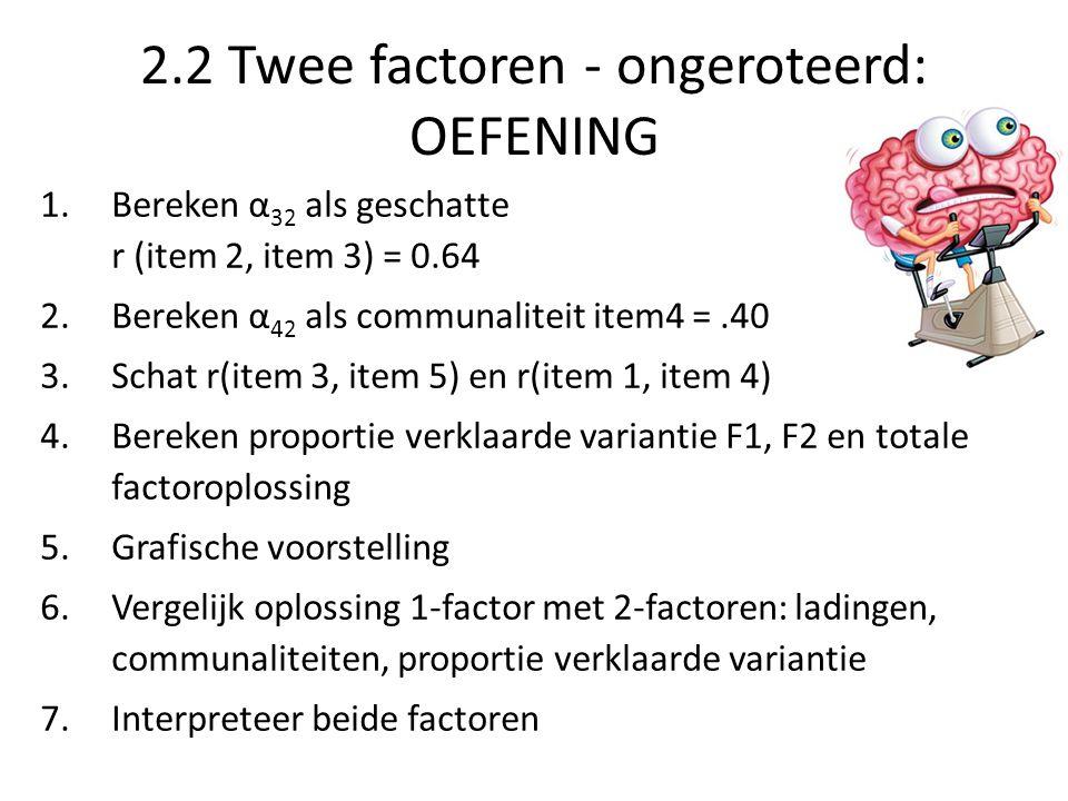 2.2 Twee factoren - ongeroteerd: OEFENING