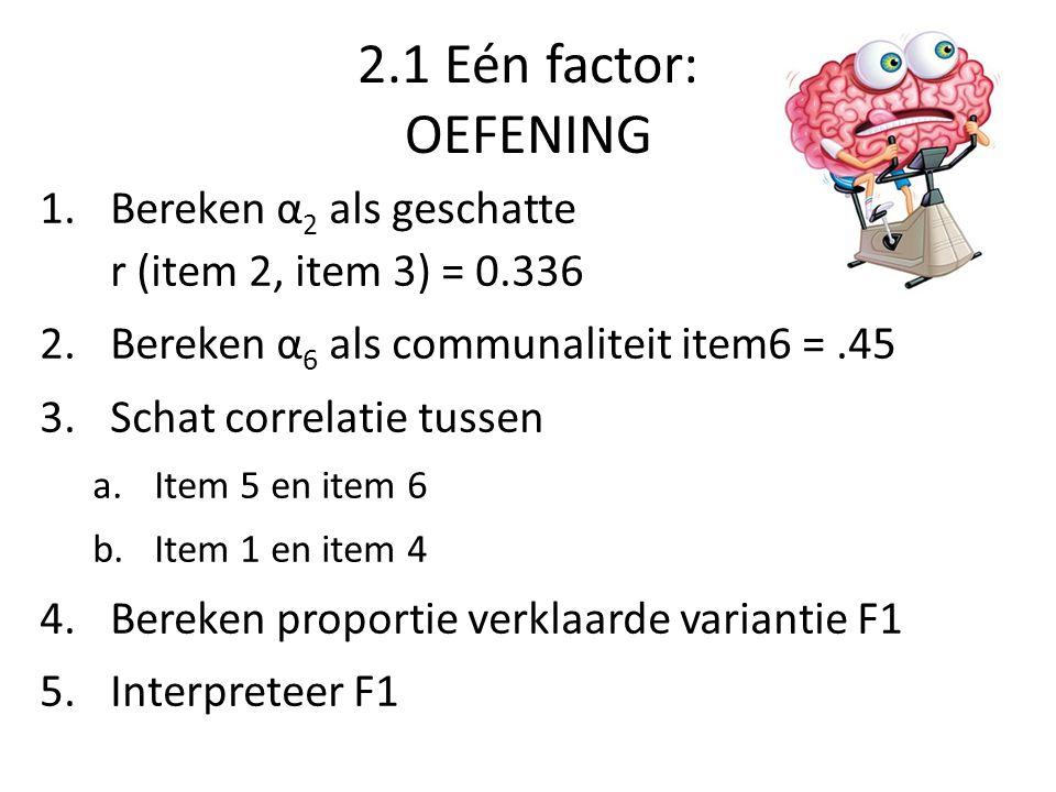 2.1 Eén factor: OEFENING Bereken α2 als geschatte r (item 2, item 3) = 0.336. Bereken α6 als communaliteit item6 = .45.