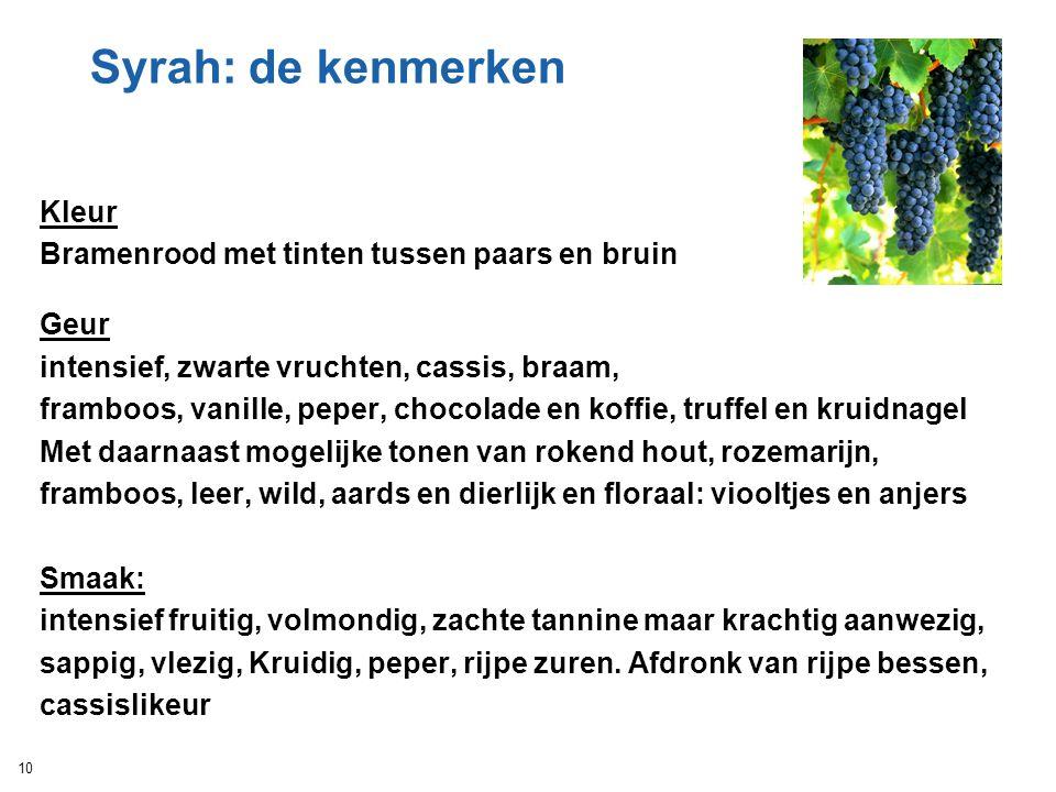 Syrah: de kenmerken