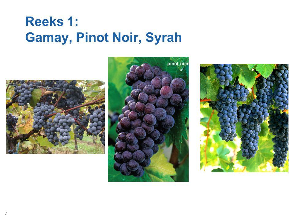 Reeks 1: Gamay, Pinot Noir, Syrah
