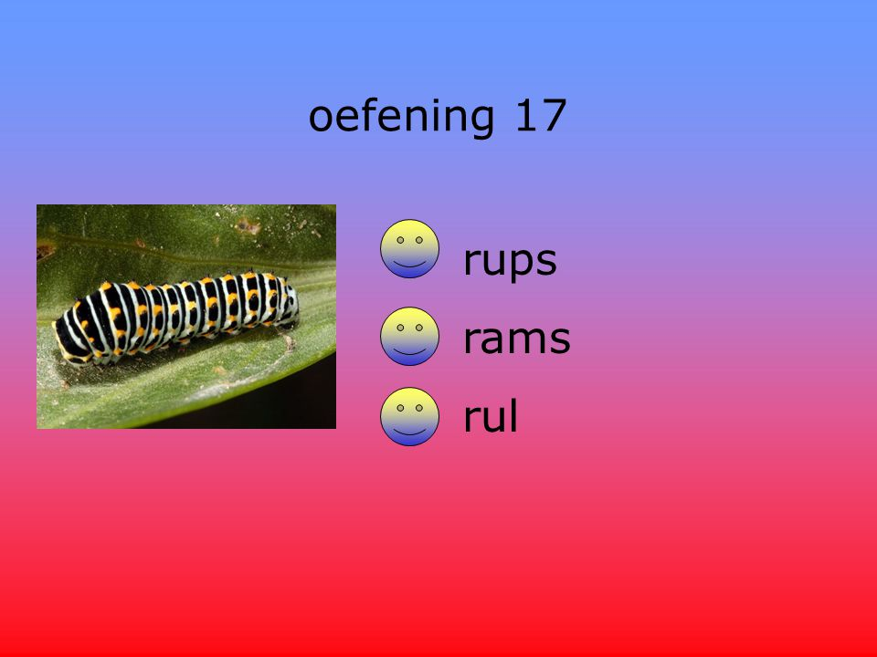 oefening 17 rups rams rul