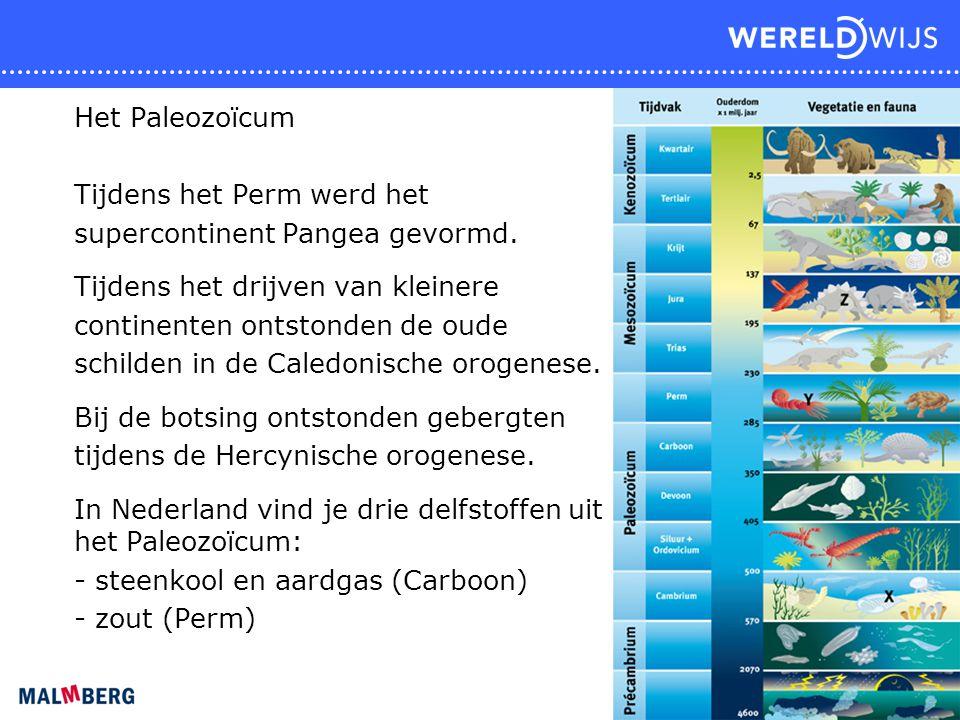 Het Paleozoïcum Tijdens het Perm werd het. supercontinent Pangea gevormd. Tijdens het drijven van kleinere.