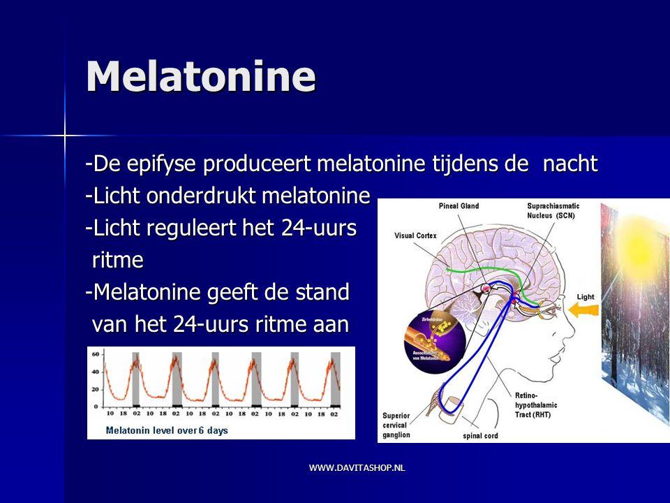 Melatonine -De epifyse produceert melatonine tijdens de nacht
