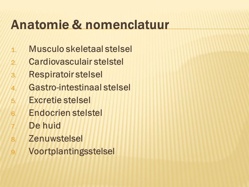 Anatomie & nomenclatuur