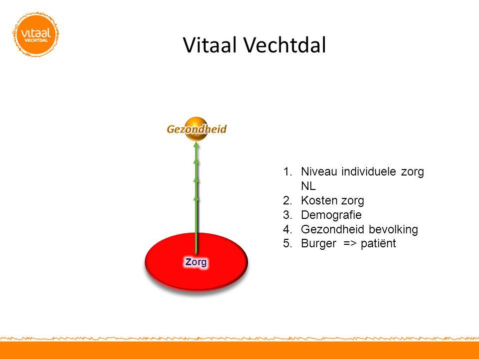 Vitaal Vechtdal Gezondheid Niveau individuele zorg NL Kosten zorg
