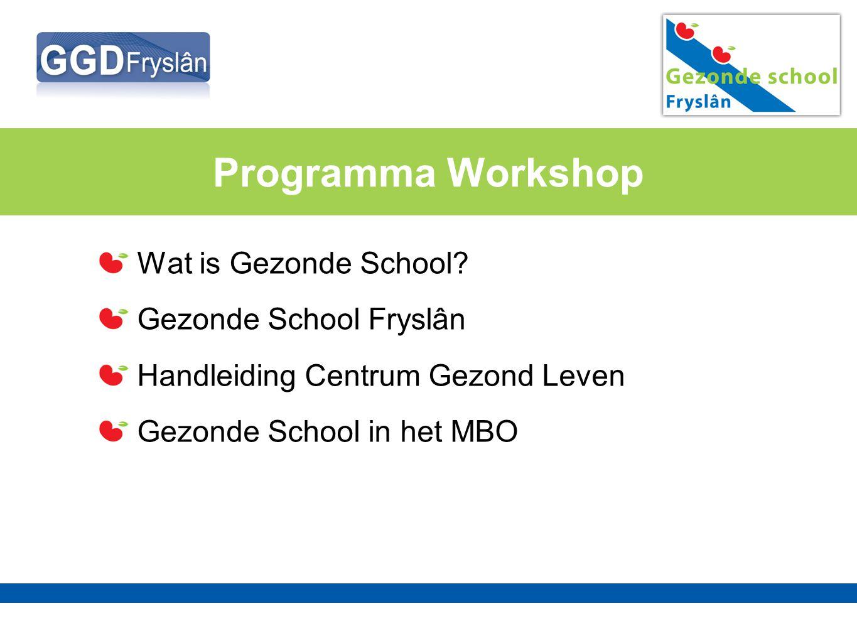 Programma Workshop Wat is Gezonde School Gezonde School Fryslân