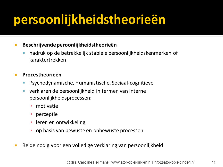 persoonlijkheidstheorieën