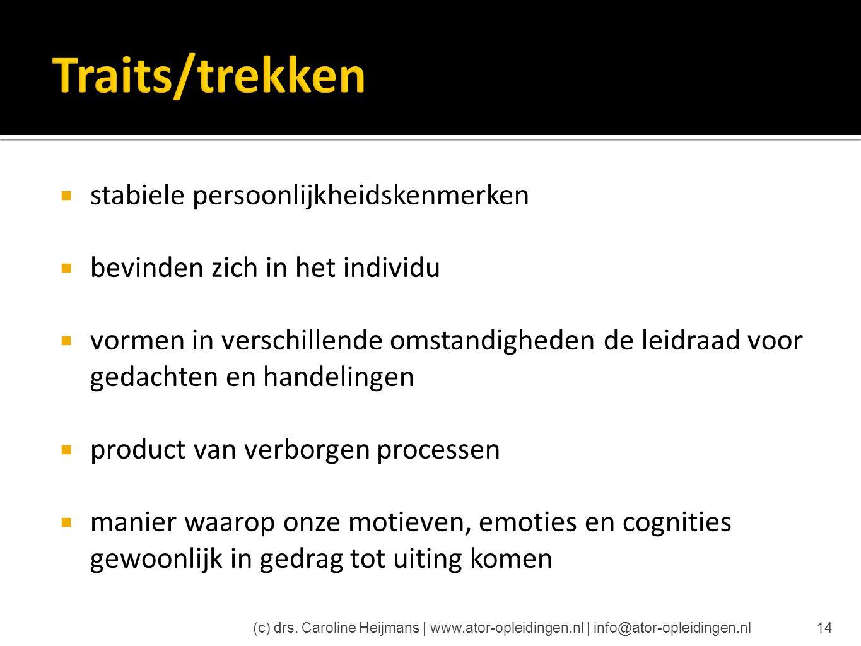 Traits/trekken stabiele persoonlijkheidskenmerken