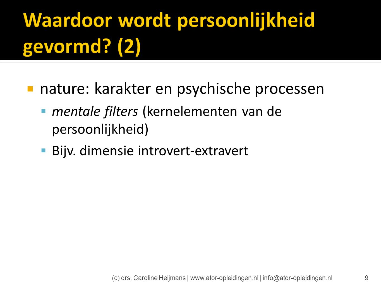 Waardoor wordt persoonlijkheid gevormd (2)