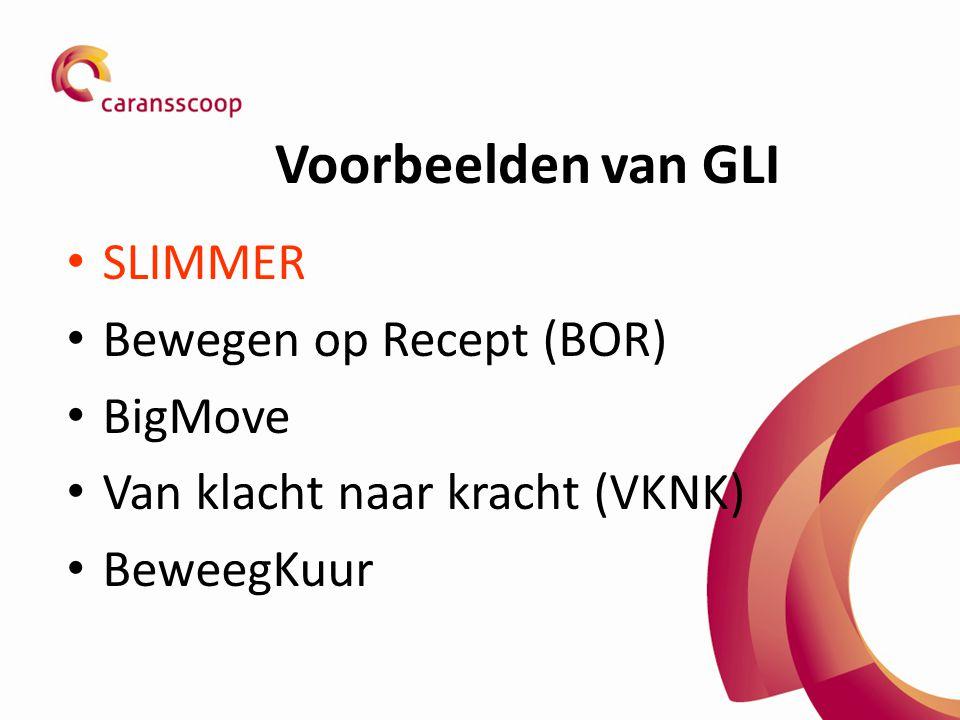 Voorbeelden van GLI SLIMMER Bewegen op Recept (BOR) BigMove