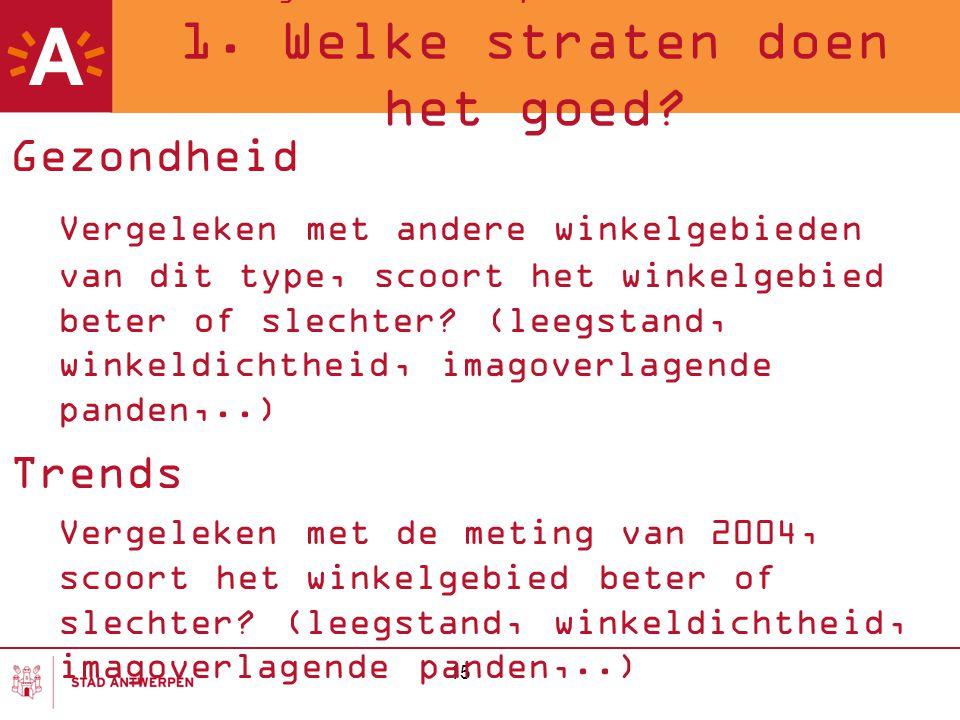Meting van de Antwerpse winkelstraten 2007 1