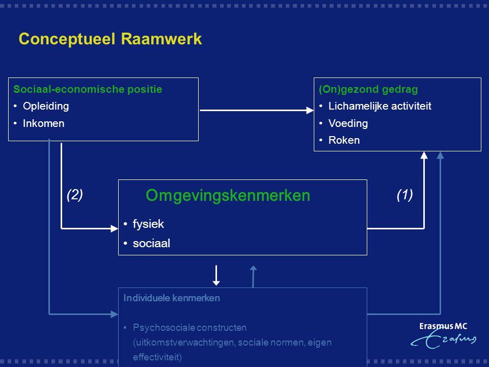 Conceptueel Raamwerk Omgevingskenmerken (2) (1) fysiek sociaal