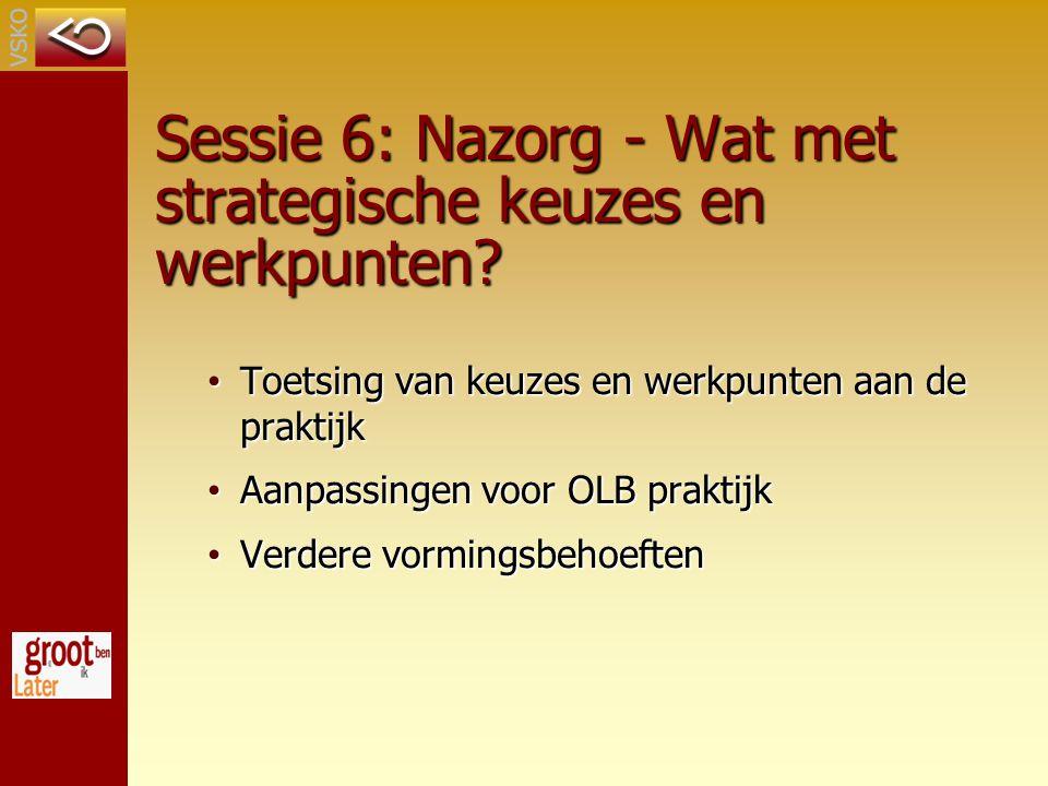 Sessie 6: Nazorg - Wat met strategische keuzes en werkpunten