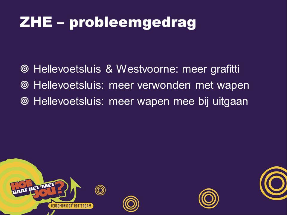 ZHE – probleemgedrag Hellevoetsluis & Westvoorne: meer grafitti