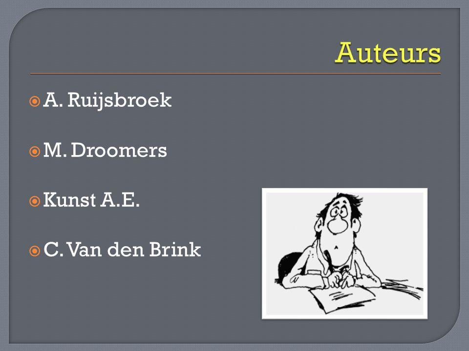 Auteurs A. Ruijsbroek M. Droomers Kunst A.E. C. Van den Brink