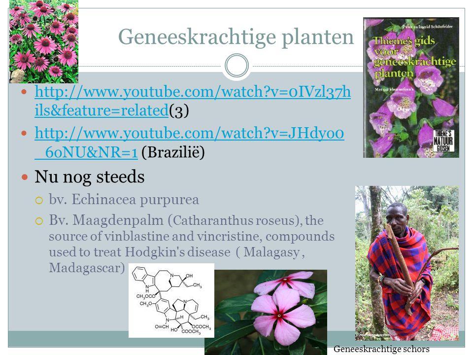 Geneeskrachtige planten