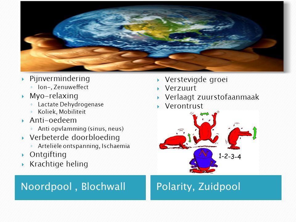 Noordpool , Blochwall Polarity, Zuidpool Pijnvermindering Myo-relaxing