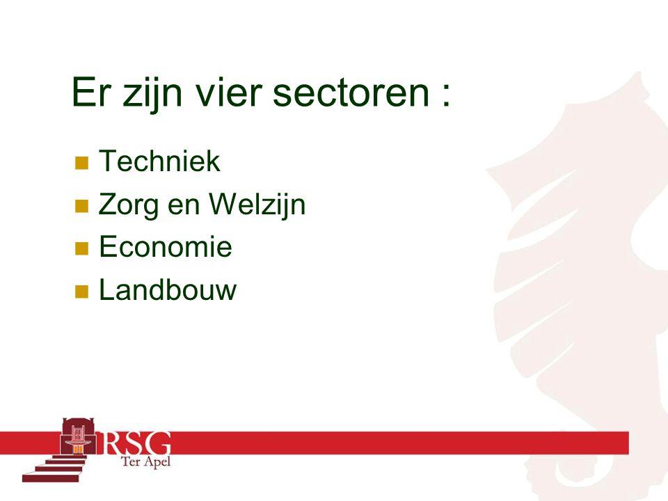 Er zijn vier sectoren : Techniek Zorg en Welzijn Economie Landbouw